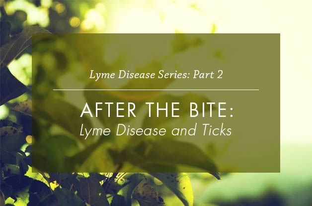 After the Bite- Lyme Disease and Ticks