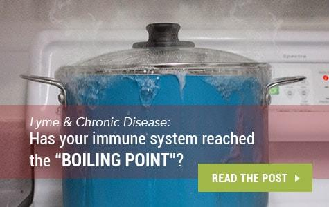 "Lyme & Chronic Disease: Has Your Immune System Reached the ""Boiling Point""?"