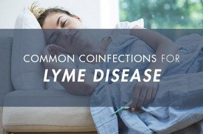 Not Just Borrelia: The Truth About Lyme Disease Coinfections