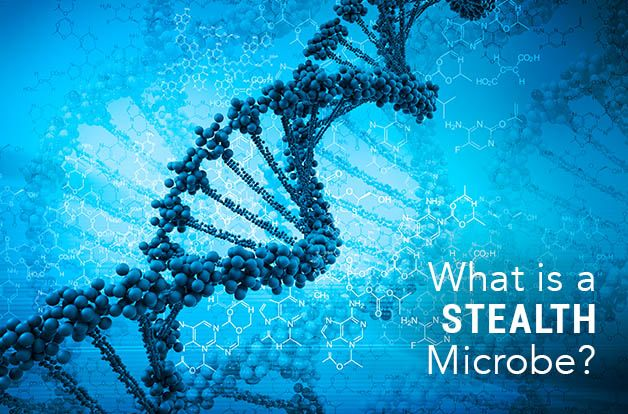 What is a Stealth Microbe?