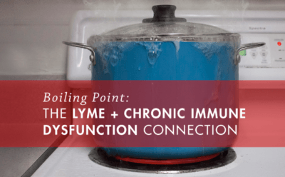 boiling-point-lyme-disease