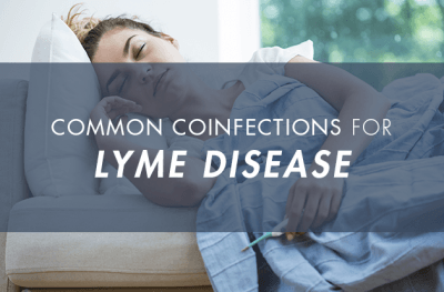 Lyme disease common coinfections