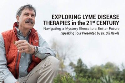 Lyme Disease Therapies in the 21st Century