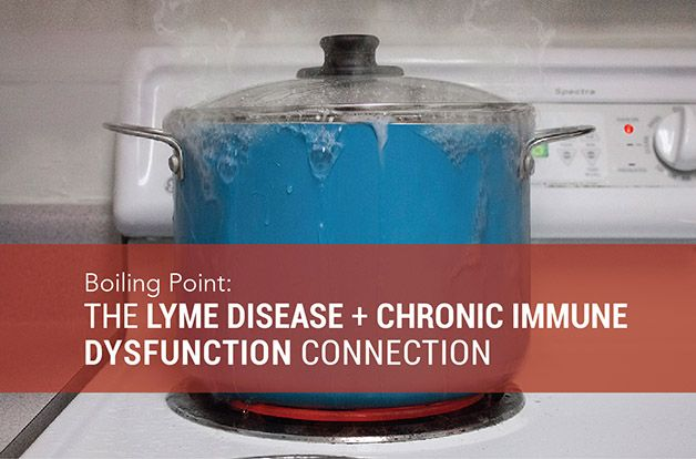 The Lyme Disease + Chronic Immune Dysfunction Connection