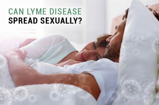 Can Lyme Be Sexually Transmitted