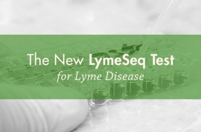 LymeSeq Test for Lyme Disease