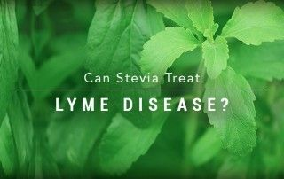 stevia-blog-header