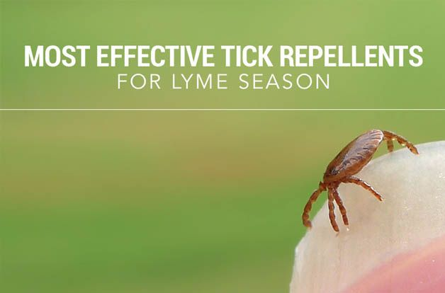 the-most-effective-tick-repellents-for-lyme-season