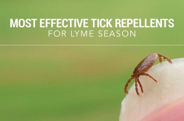 tick-repellant-header