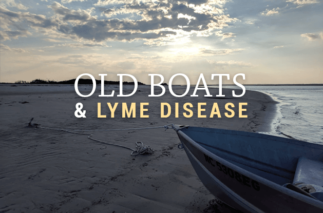 old boats and lyme disease