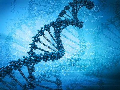 Epstein-Barr Virus: A Key Player in Chronic Illness | RawlsMD