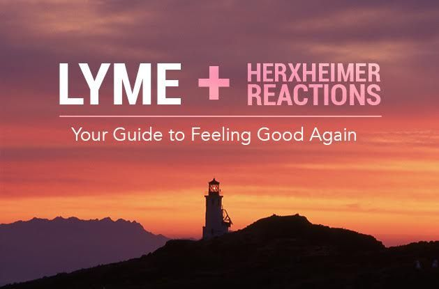 Lyme + Herxheimer Reactions: Your Guide To Feeling Good Again