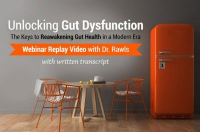 Unlocking Gut Dysfunction Webinar Replay
