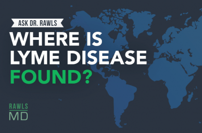 Where is Lyme disease found