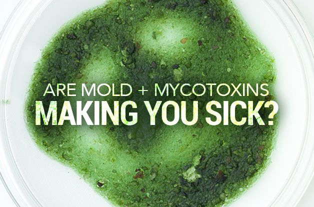 Are Mold + Mycotoxins Making You Sick?