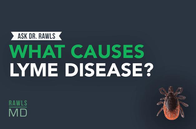 adr_blogheader_what-causes-lyme-disease_-_-ask-dr-rawls