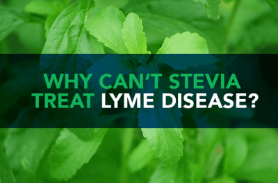 Why Can't Stevia Treat Lyme Disease