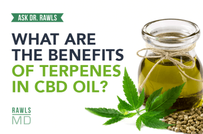 What are the Benefits of Terpenes in CBD Oil?