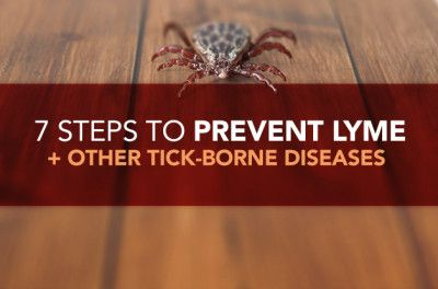 7-steps-to-prevent-lyme-and-tick-borne-diseases