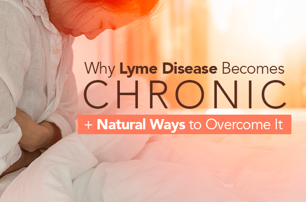 Why Lyme Disease Becomes Chronic + How to Overcome It