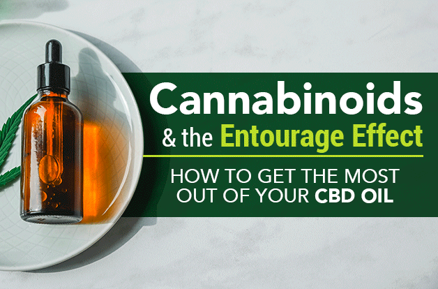 cannabinoids-entourage-effect-cbd-oil