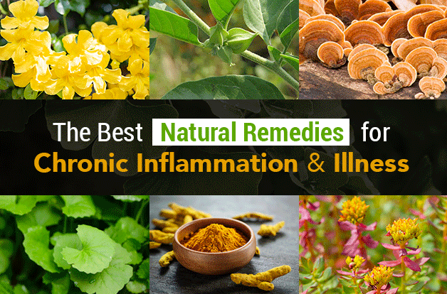 The Best Natural Remedies for Chronic Inflammation and Illness
