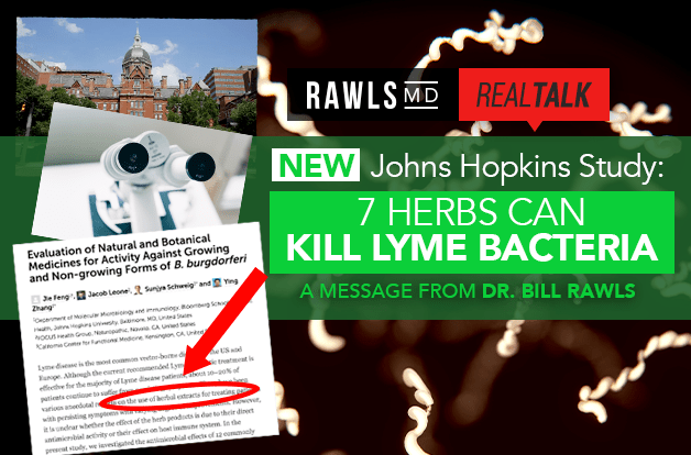 [Real Talk] New Johns Hopkins Study: 7 Herbs Can Kill Lyme Bacteria