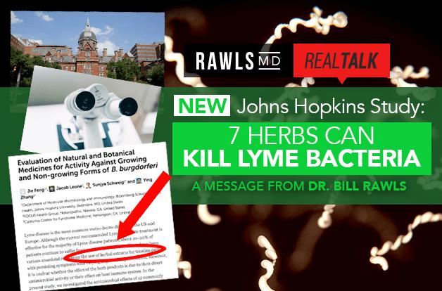 [Real Talk] New Johns Hopkins Study: 7 Herbs Can Kill Lyme Bacteria