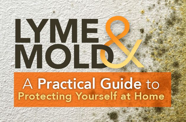 Lyme and Mold: A Practical Guide to Protecting Yourself at Home