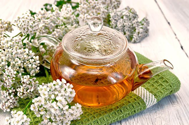 Yarrow tea in a glass teapot on a green napkin, fresh yarrow flowers on a background of pale wooden plank