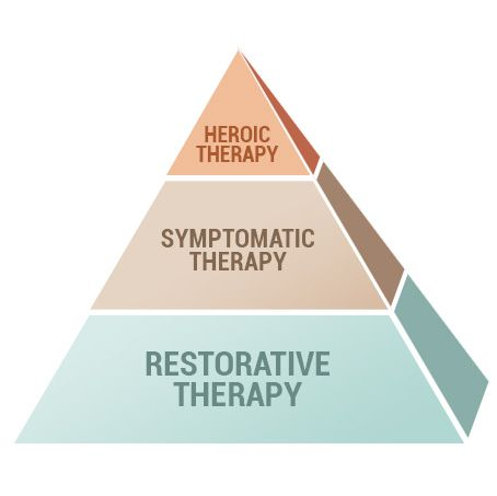 3 Lyme disease treatment approaches: heroic, symptomatic, restorative