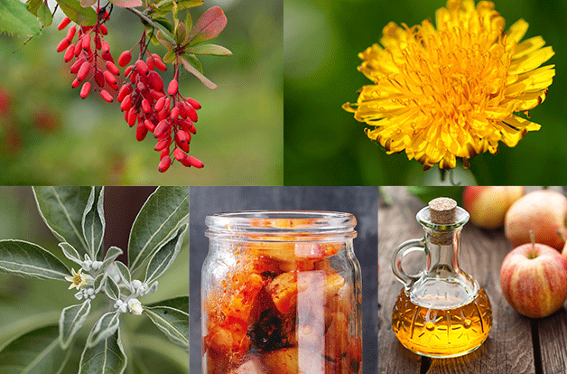 picture split in grid. berberine, dandelion, bitters, ashwagandha, apple cider vinegar