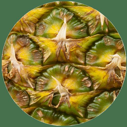 zoomed in pineapple skin