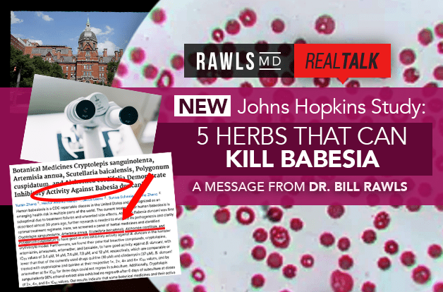 [Real Talk] New Johns Hopkins Study: 5 Herbs that Can Kill Babesia