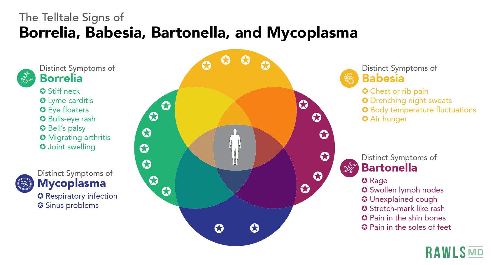 circle chart of telltale symptoms. Borrelia: stiff neck, lyme carditis, eye floaters, bulls eye rash, bells palsy, migrating arthritis, joint welling. Mycoplasma: respiratory infection, sinus problems. Babesia: chest or rib pain, drenching night sweats, body temperature fluctuations, air hunger. Bartonella: rage, swollen lymph nodes, unexplained cough, stretch-mark like rash, pain in shins, pain in soles of feet