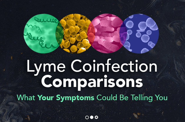 Lyme Coinfection Comparisons: What Your Symptoms Could Be Telling You