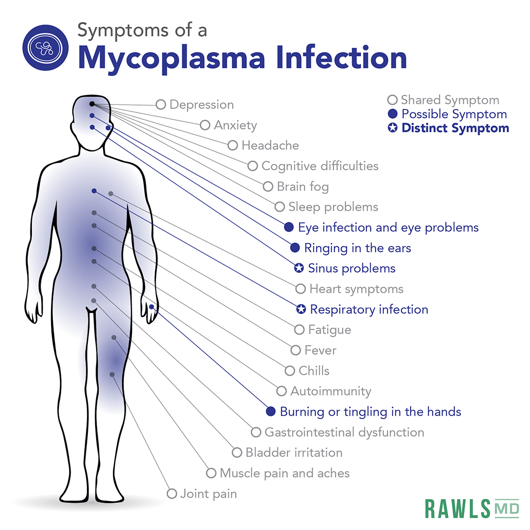 symptoms of mycoplasma, depression, anxiety, headache, cognitive difficulties, brain fog, sleep problems, eye infection and eye problems, ringing in ears, sinus problems, heart symptoms, respiratory infection, fatigue, fever, chills, autoimmunity, burning or tingling hands, gastrointestinal dysfunction, bladder irritation, muscle pain, joint pain
