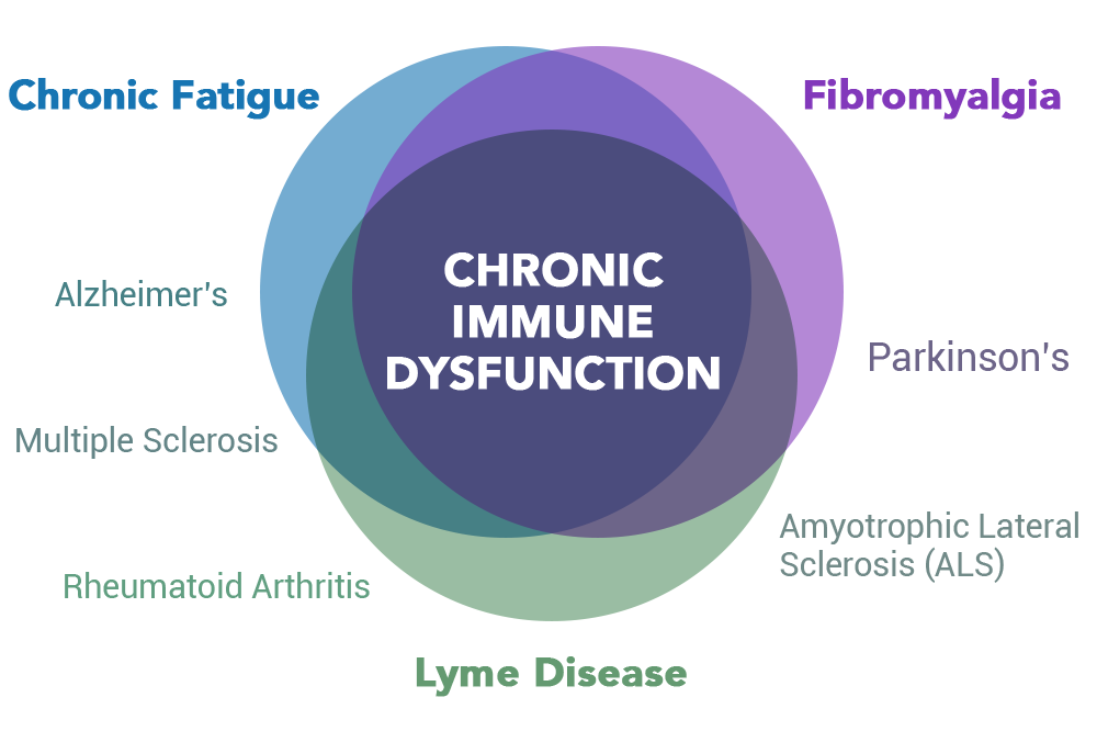 overlapping circle chart of chronic fatigue, fibromyalgia, and lyme disease. Related disease being alzheimers, multiple sclerosis, arthritis, Parkinsons, and ALS