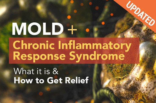 Mold + Chronic Inflammatory Response Syndrome (CIRS): What is It + Ways to Get Relief